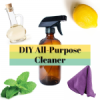 DIY All-Purpose Cleaner {Non-Toxic}