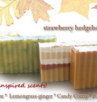 Giveaway: Autumn inspired Strawberry Hedgehog soaps