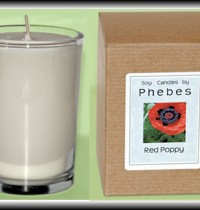 Soy Candles by Phebes review and giveaway!
