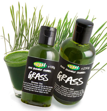 LUSH grass shower gel
