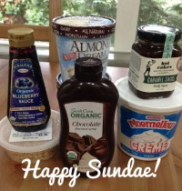 Ingredients for The BEST Vegan Sundae!