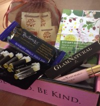 Petit Vour November Box Review