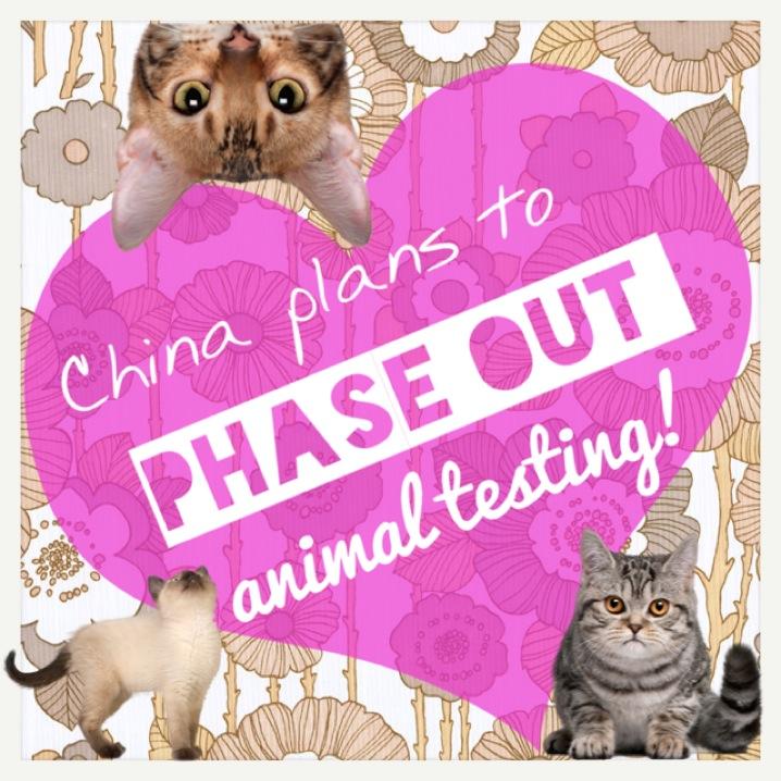 China-animal-testing