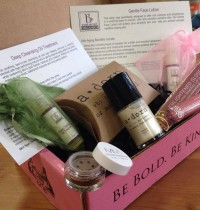 December's Petit Vour Beauty Box Review