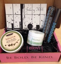 January's Petit Vour Beauty Box Review