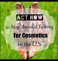 Act Now to Stop Animal Testing for Cosmetics in the U.S.
