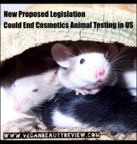 New Bill Aims to End Animal Testing for Cosmetics in the US