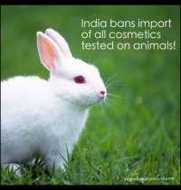 India Bans Import of All Cosmetics Tested on Animals
