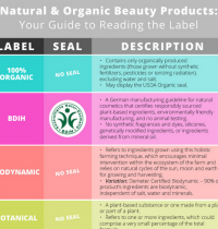 Cruelty-Free Cosmetics & Guide to Reading Labels