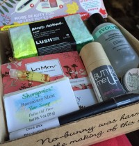 November 2014 Vegan Cuts Beauty Box Review