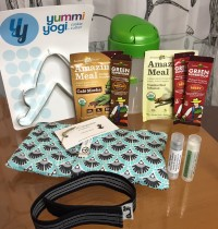 December 2014 BuddhiBox Review