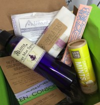 January 2015 BuddhiBox Review