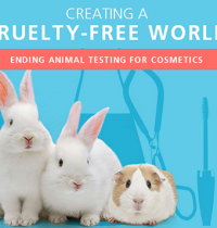 #BeCrueltyFree This Week and Every Week