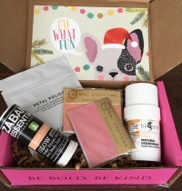 Petit Vour Vegan Beauty Box Review – December 2015