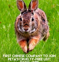 Eco&more Becomes First Chinese Company to Join PETA's Cruelty-Free List