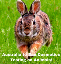 Australia to Ban Cosmetics Testing on Animals!