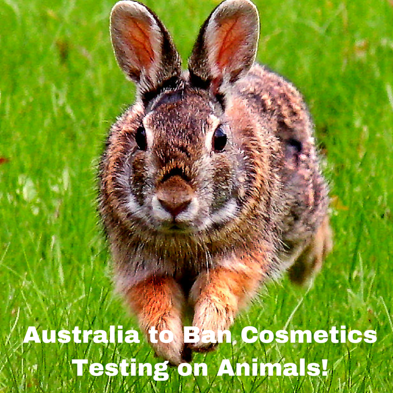 Australia to Ban Cosmetics Testing on Animals
