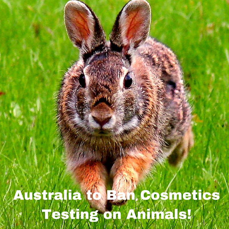 Australia to Ban Cosmetics Testing on Animals