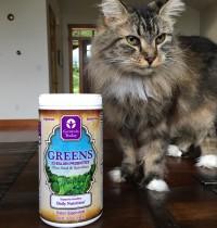 Genesis Today Greens Smoothie Recipe