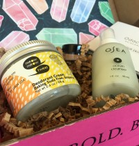 Petit Vour Vegan Beauty Box September 2016 Review