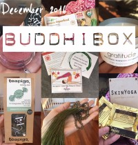 BuddhiBox December 2016 Review