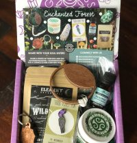 Goddess Provisions Subscription Box Review – September 2017